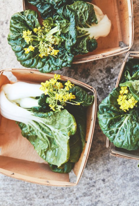 Anna Jones bok choy flowers on counter raw food