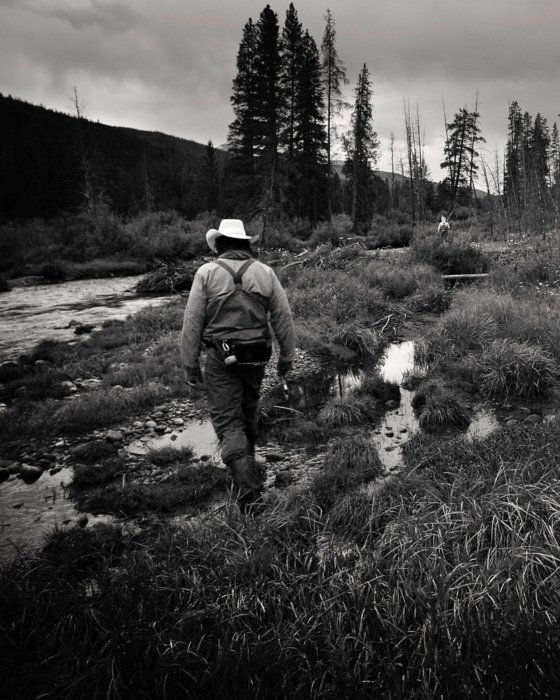 A fly fisherman wading through a shallow area of a stream