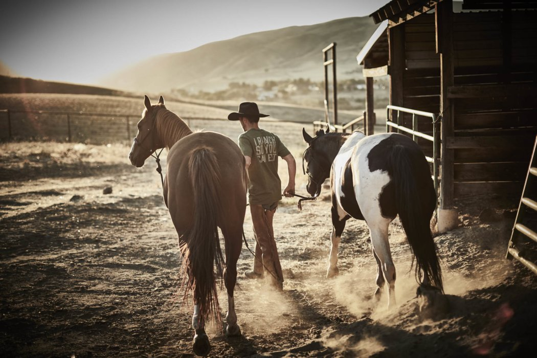 A rancher leading two horses on his ranch