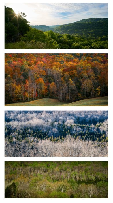 Four Seasons Images of the Edge of Appalachia Preserve