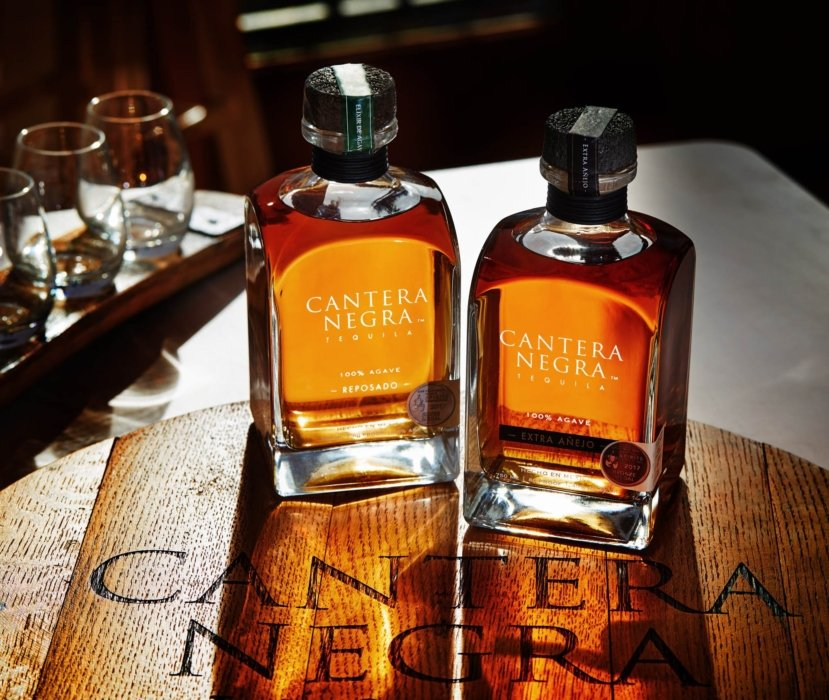 Two bottles of cantera negra tequila in the morning sun on wood - drink photograpy