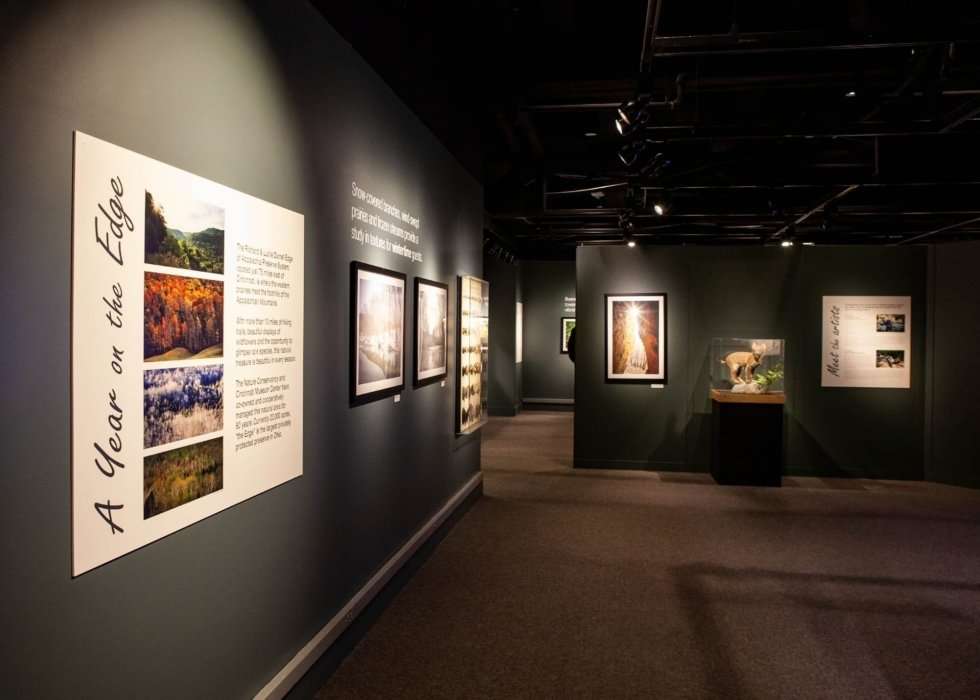 The entrance and Featured images from a museum showing of the year on the edge