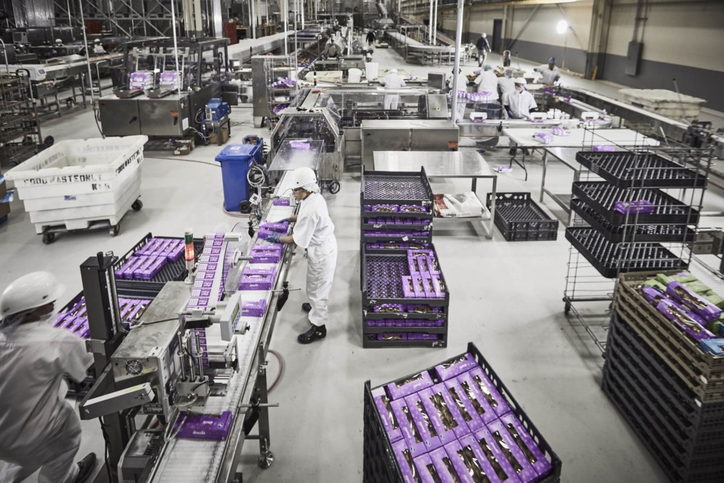 An industrial facility backing donuts in purple packaging