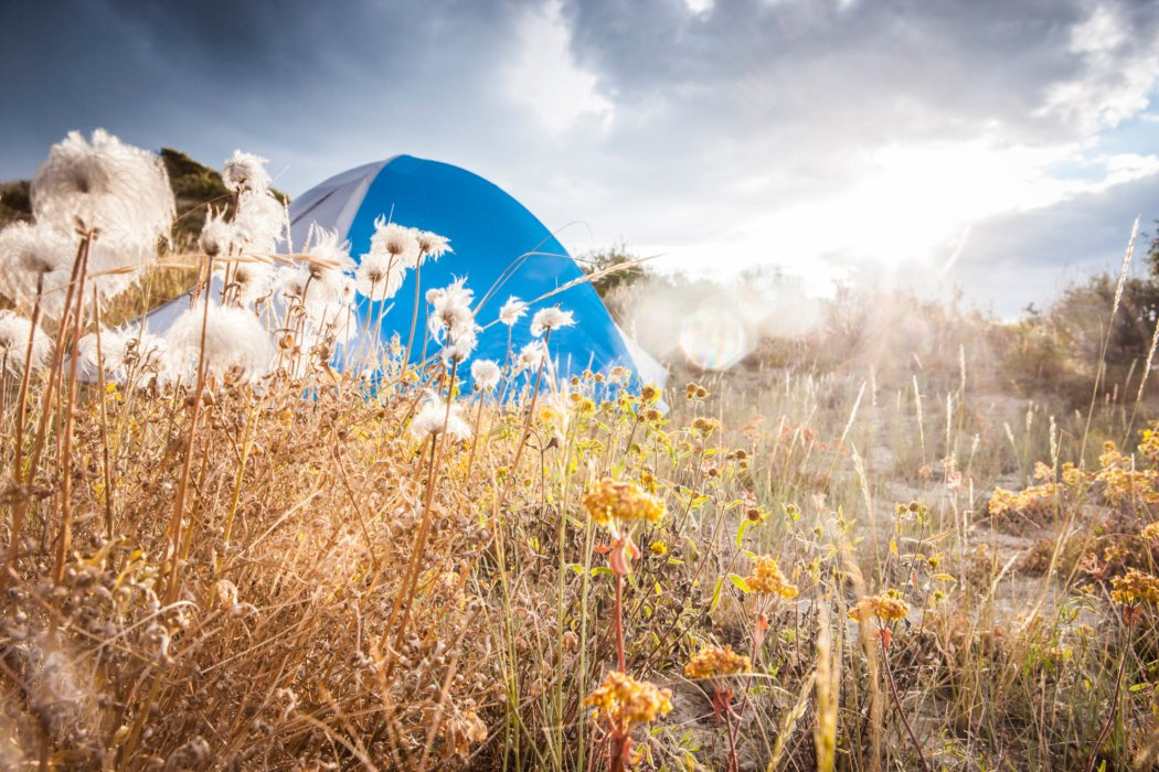 A tent in a nice field in the autumn