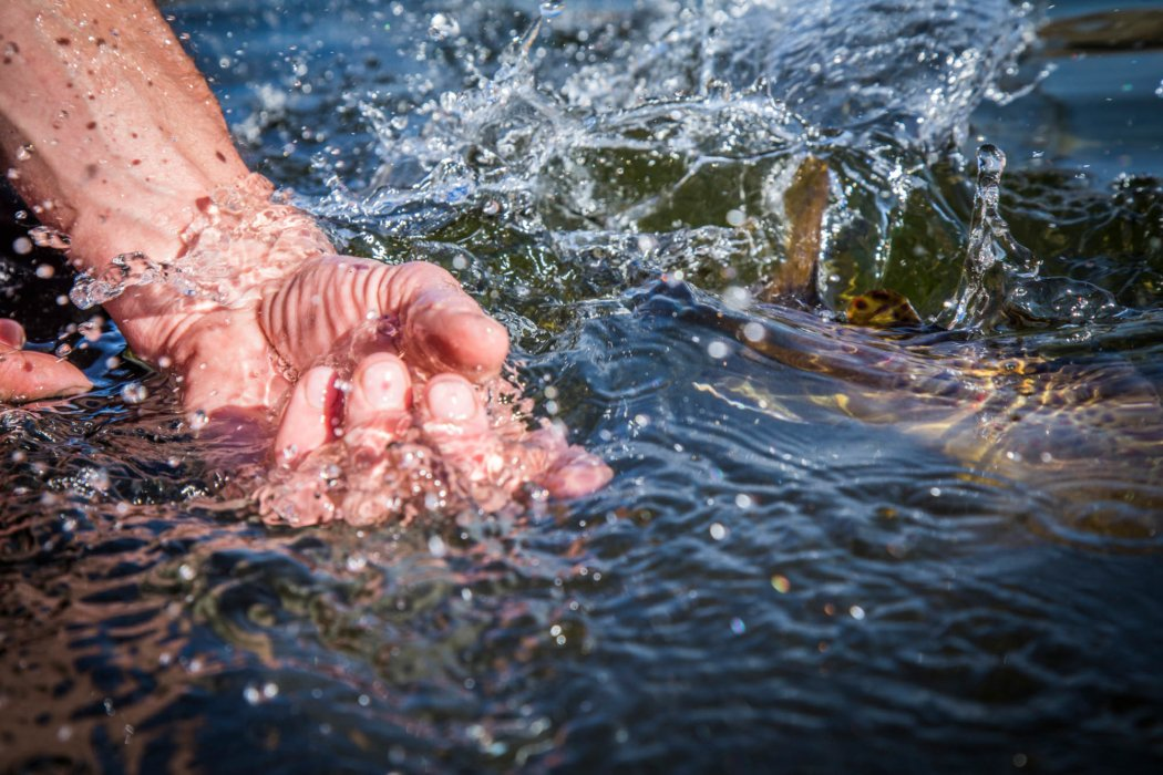 A fishing splashing in the water after being release