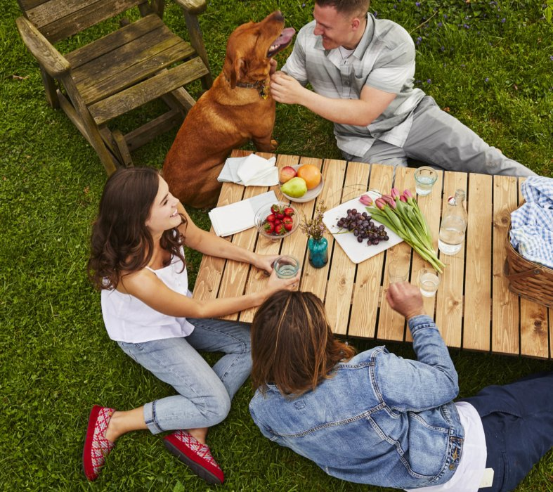 A group of friends outside enjoying a dog and picnic