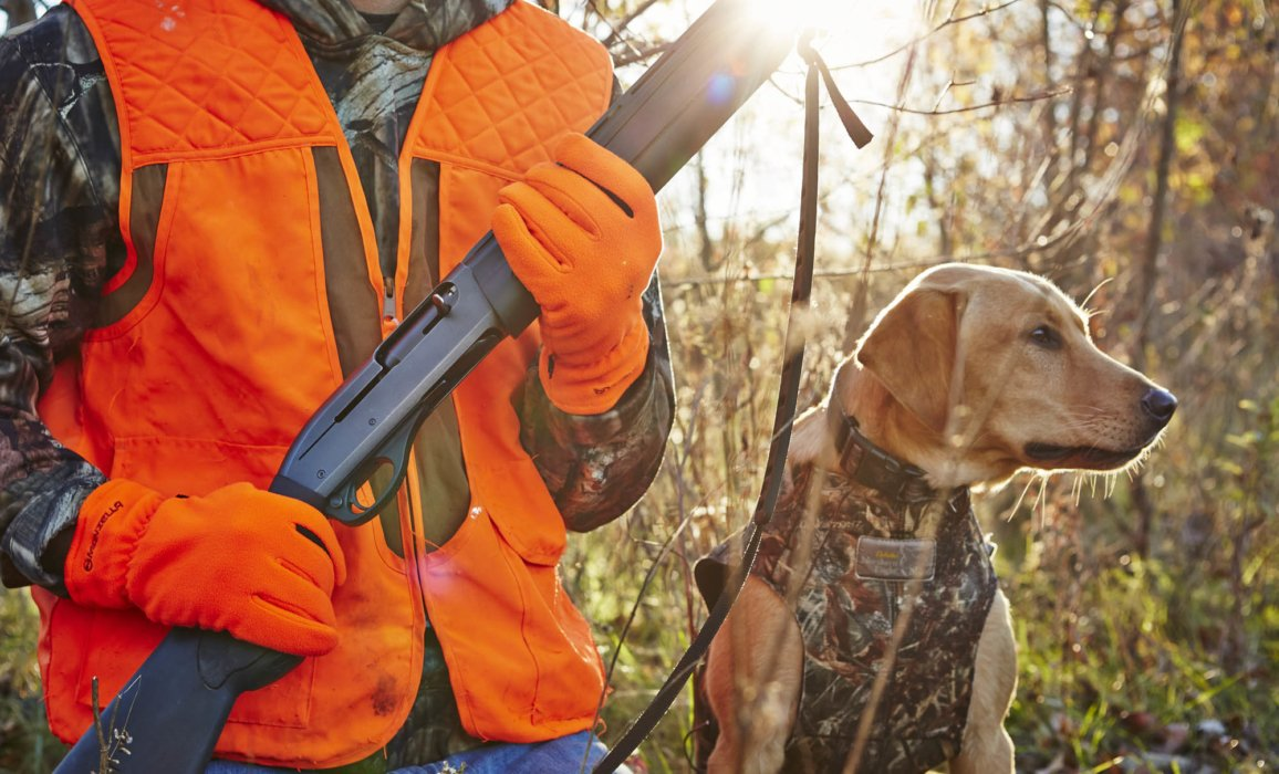 A hunting dog and hunter with shotgun