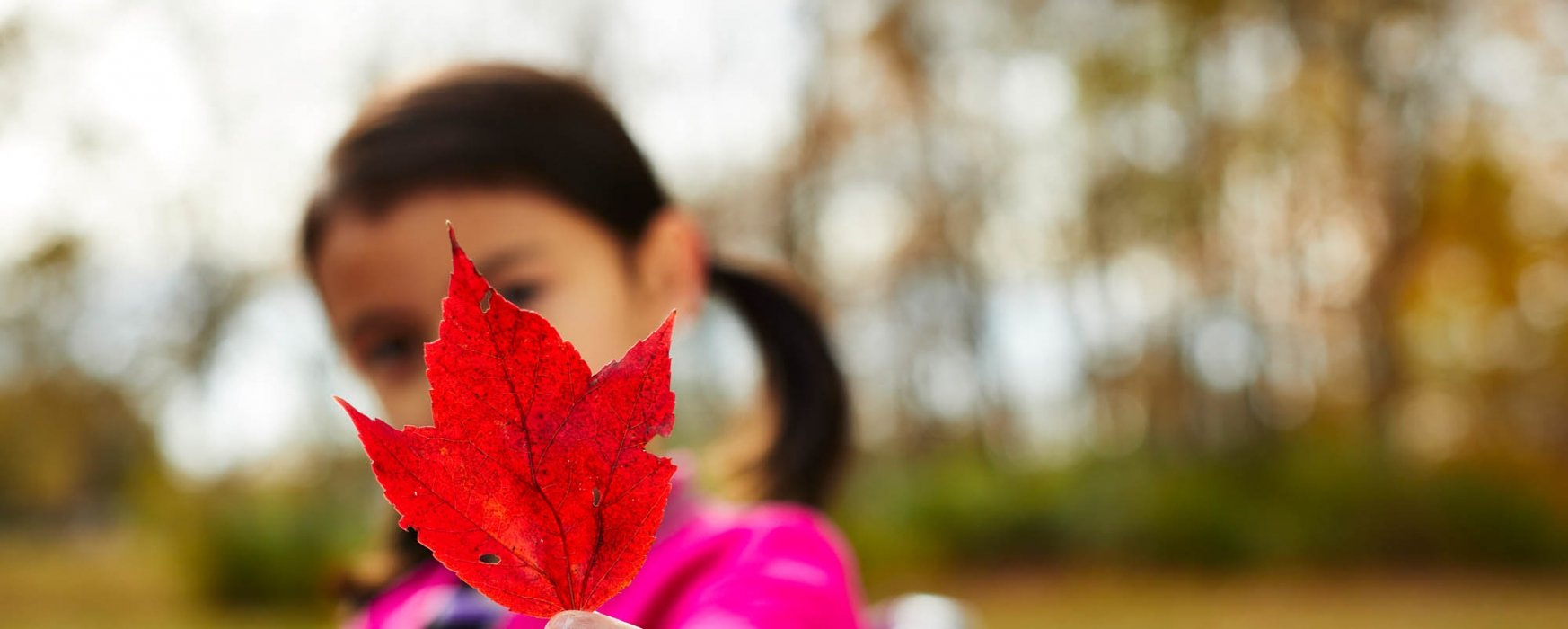 Girl holding a red maple leaf - Lifestyle Photography