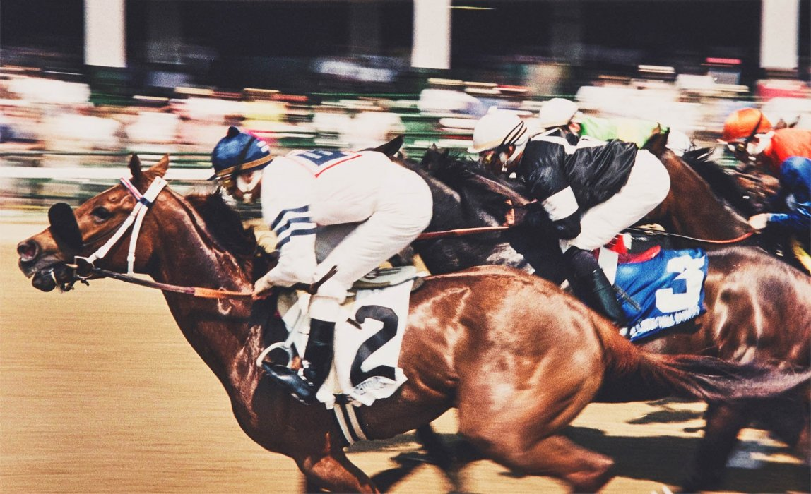 A horse race in motion - sport photography